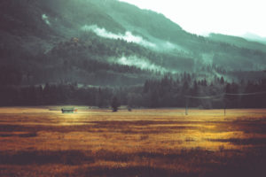 Hütte und Jägerstand in herbstlicher Landschaft