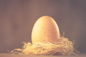 Ein Hühnerei im Nest, Ostermotiv,