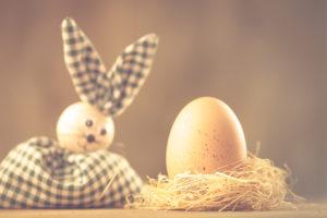 Osterhase schaut auf ein Hühnerei im Nest, Ostermotiv,