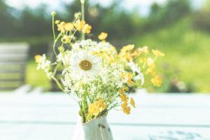 Frühling - Der Garten blüht im Sonnenlicht. Margeriten und Butterblumen in einer Vase im Garten.