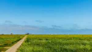 Ein Weg - Pfahlbauten am Strand von St. Peter Ording, Wattenmeer, Nordsee
