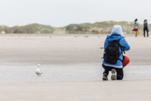 A photographer with a backpack kneels in the sand to take a picture and is watched by a seagull.