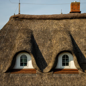 Thatched roof, thatched roof, with thatched roof in Northern Germany, close-up