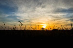 Farbenprächtiger Sonnenuntergang an der Nordsee - im Gegenlicht der Sonne ein typisches Stelzenhaus, Pfahlbau, Pfahlbauten, das den Gezeiten trotzt.