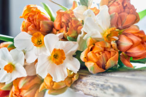 Bouquet of tulips and daffodils on a windowsill