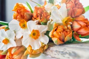 Strauß Tulpen und Narzissen auf einer Fensterbank