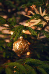 Christmas bauble on tree, Still life Christmas