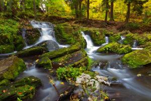 Selkefälle, waterfall, autumn, rock, wood, Harz, Germany