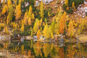 Goldene Stunde, Herbst, Lago Federa, Cortina d'Ampezzo, Belluno, Italien, Europa