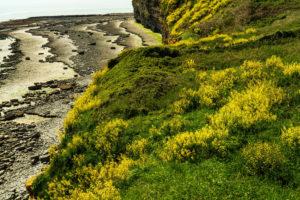 Coastal impression at Nash Point, Wales