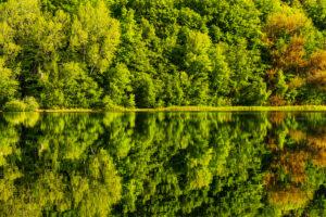 Garrensee, Lauenburg Lakes Nature Park