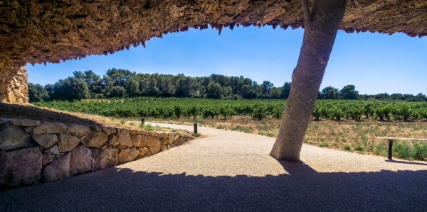 Domaine Castigno wine cellar at Assignan in summer. Has the shape of a bottle and the external walls are covered with cork.