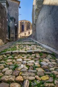 Die Pfarrkirche Notre Dame de Pitié stammt aus dem XIII Jahrhundert und wurde in ländlicher gotischer Architektur erbaut. Puissalicon gehört zum Typus der Circulades – Runddörfer an.