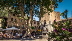 Place de la Liberté in Saint Guilhem le Désert im Frühling mit 150 jährigen Platane. Das Dorf gehört zu den Plus Beaux Villages de France. Liegt am am Pilgerweg nach Santiago de Compostela.