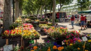 Markt in Narbonne im Frühling. Der Markt findet jeden Donnerstag auf der Cours de la République statt.