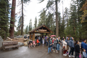 Visitors to Sequoia National Park in California, USA