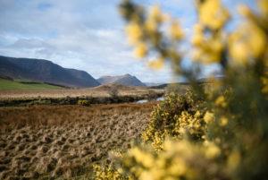 Landschaft im Connemara Nationalpark, Irland