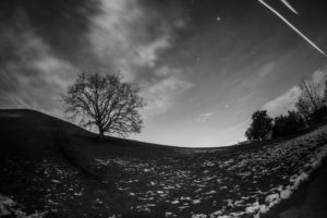 Long-exposure photography at night, tree on hill, with shooting stars