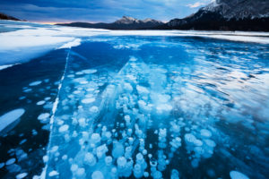 Canada, Alberta, Abraham Lake, Bubbles and Cracks in the Ice