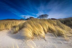Sand dunes on Baltic Sea in the sundown, Baltic sea spa Prerow, Mecklenburg-Western Pomerania, Germany