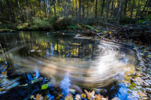 River, water surface, leaves, detail, blur,