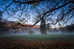 Autumn landscape, fog, morning,