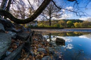 Lake shore, autumn leaves, trees, house,