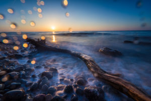 Baltic sea at evening light and long exposure, setting sun lights branches and stones in the sea water