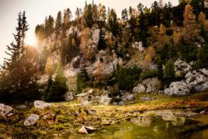 Spätherbst Im Rofan am Achensee, Österreich, kleine Hütte im Herbstwald