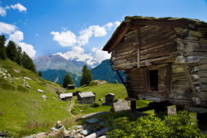 Typical Wallis wooden barnl with summer meadow in Zermatt, Valais, Switzerland
