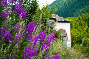 Kapelle auf dem Blatten mit Blumen im Vordergrund, Wallis, Schweiz