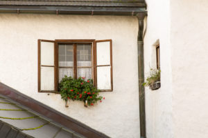Window, opened, plants, facade, flowerpot