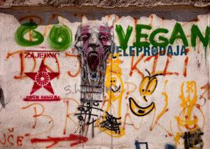 Graffiti, Streetart, Belgrad, Serbien