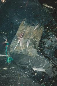 Abfall, Meeresverschmutzung, Mikroplastik, Müllentsorgung, Meer, Müll