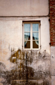 Window, house, Lucca, Tuscany, Italy