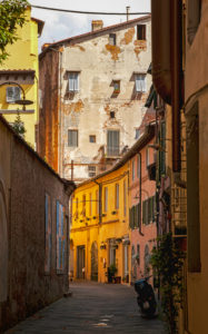House, alley, Lucca, Tuscany, Italy, city