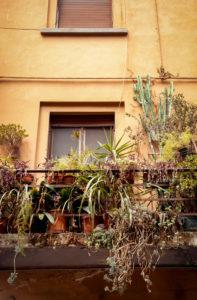Haus, Balkon, Pisa, Toskana, Italien