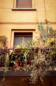 House, balcony, Pisa, Tuscany, Italy