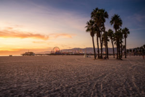 USA, California, Los Angeles, Santa Monica Pier, sunset on the beach with palm trees