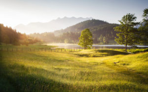 Germany, Bavaria, golden light in the morning, mountain lake and meadow