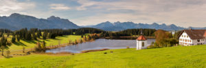 Panorama landscape in the Allgäu near Füssen with mountain range of the Alps at the Hegratsried pond