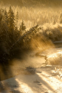 Wintry light mood with fog in the Isar valley.