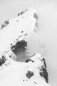 Eine Gruppe Gämsen bei Schlechtwetter im Winter an einem Berghang der Soierngruppe im Karwendel. Im Hintergrund die Schöttelkarspitze.