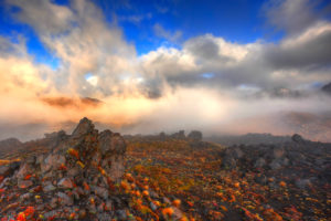 Morning fog and light mood in the Oturere Valley, Tongariro national park, New Zealand. Clouds drag about cleft volcanic rock, with different grass, lichens and Lichen.