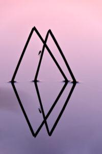 Schemen eines Schilfhalmes im Wasser einen kleinen Sees bei Sonnenuntergang. Kleine Eintagsfliegen nutzen den Halm für eine Pause