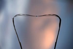 Schemen eines Schilfhalmes im Wasser einen kleinen Sees bei Sonnenuntergang. Kleine Eintagsfliegen nutzen den Halm für eine Pause, Abstraktion durch Drehung des Bildes gegen den Uhrzeigersinn.