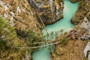 Die Geisterklamm oder auch Leutaschklamm bei Mittenwald, umgestürzte Bäume liegen darüber