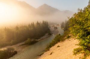 Morgendliche goldene Nebelstimmung in den Isarauen im Karwendel nahe Wallgau