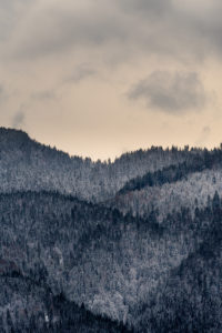 Snow covered hills / mountains at the foot of the Herzogstand in the Ester Mountains on Lake Walchensee, with dense forest