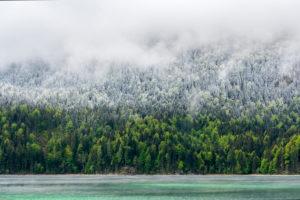Ufer des Eibsee während den Eisheiligen. Türkis blaues Wasser, grüner Wald, Neuschnee und dichte Wolken, teilen dieses Bild in vier Bereiche.